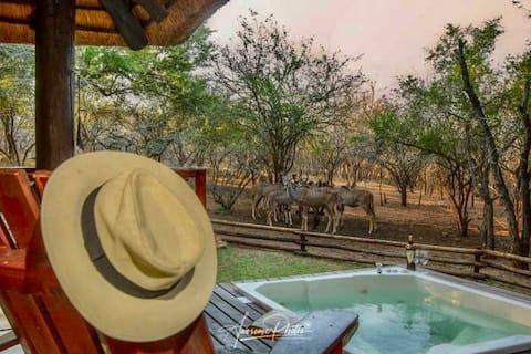 Zinkwazibush votre porte d'entrée vers le parc Kruger