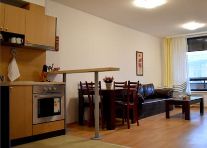 Aspen Heights 1BR Self Catering Apartment Bansko