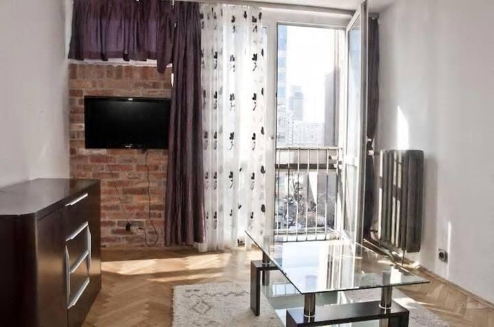 Spacious Central Apartment