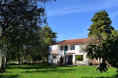 Casa de Vale de Lamas - 別荘