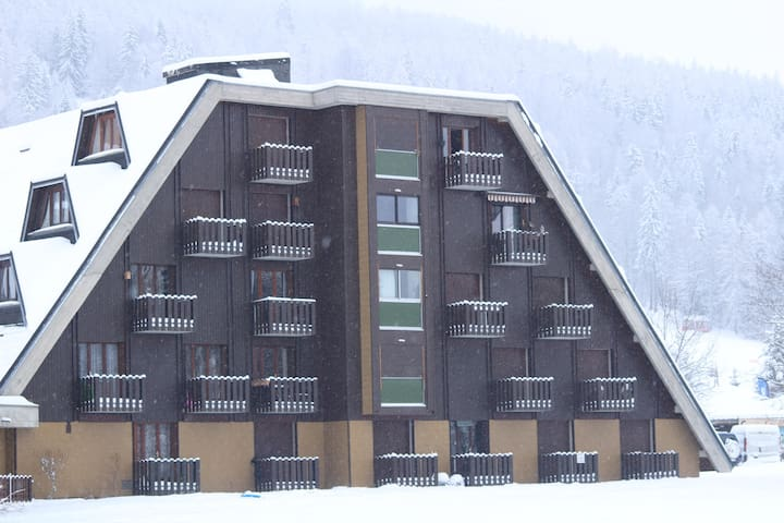 Joli studio en montagne, été , hiver. 4 personnes