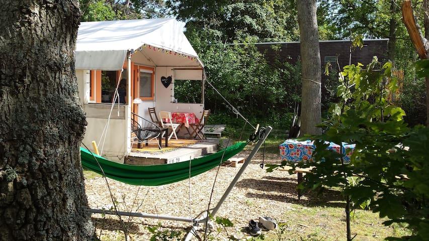 Heerlijk Tenthuis Camping Bakkum