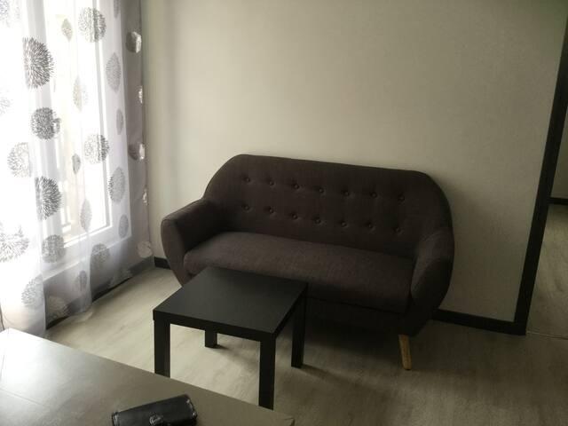 Sympathique appartement hyper centre