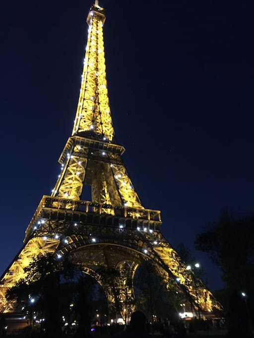 10 mn walk from the Eiffel Tower.