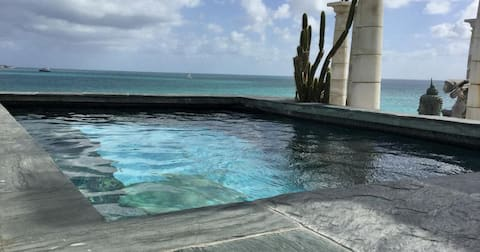 FIG Paradis, ocean front personal pool and jacuzzi