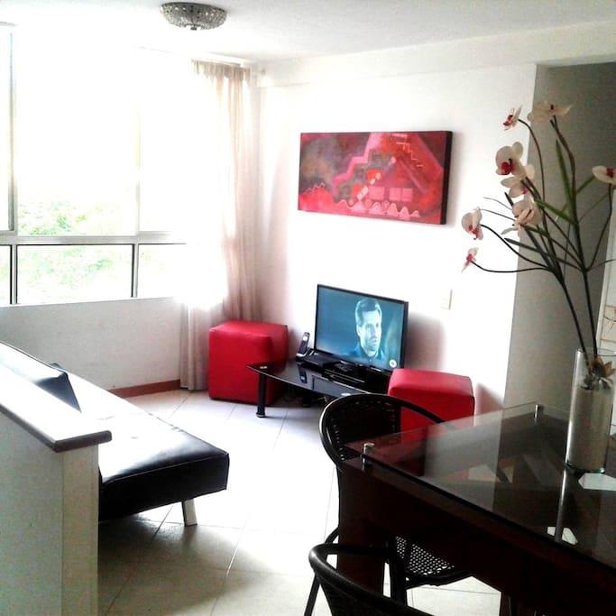 nuevas sillas del comedor  y tv en sala