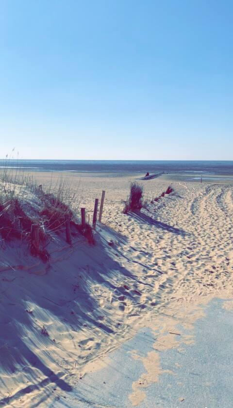 Wattenglück Nr.2  Ferienwohnung in Cuxhaven