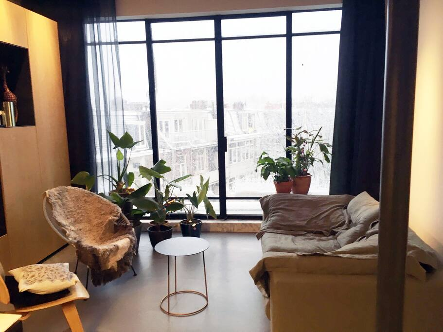 most amazing couch, plants, nice view