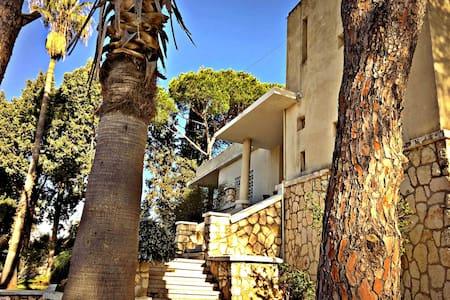 Casa De Amor - Mechref
