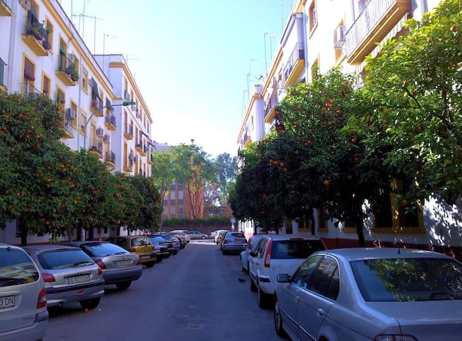 Habitación indiv. + wifi - 塞維利亞 - 公寓