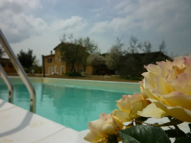 Farm on the Hill with pool GIRASOLE