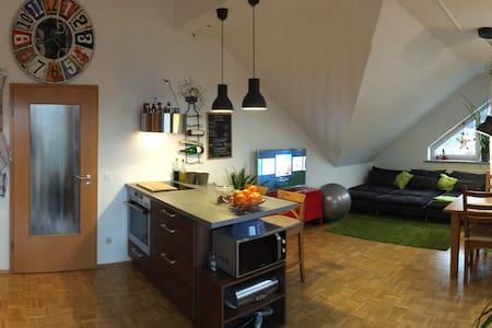 Über den Dächern - Saal an der Donau - Apartment - 1