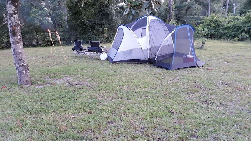 *Camp Sites* Fish the Dead Lakes and Mexico Beach