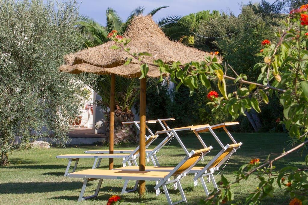 Zona relax con lettini prendisole, ombrelloni,doccia