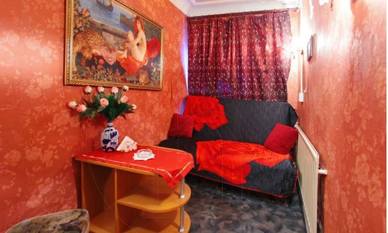 Частный мини отель - Sankt-Peterburg - House