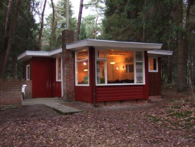 Comfortabel vrijstaand boshuis in Norg - Norg - Cabaña