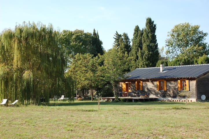 La Cabane Bleue, un lieu unique à Saint Rémy - Saint-Rémy-de-Provence - Casa