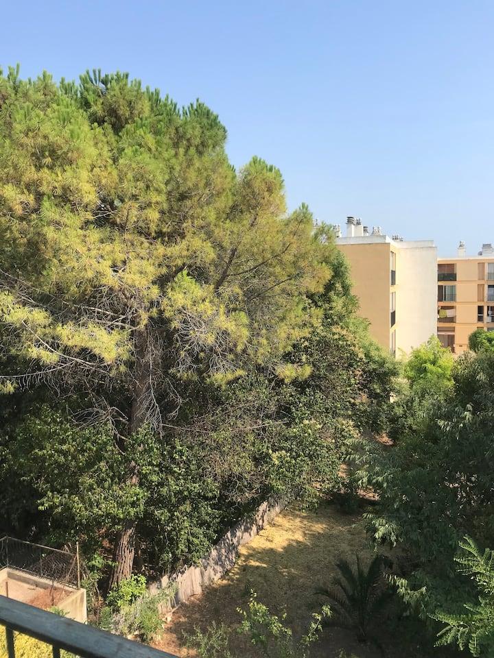 Appartement avec vue sur les arbres