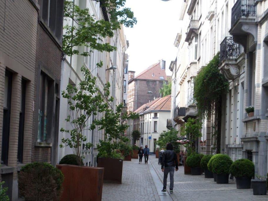 Pedestrial Street