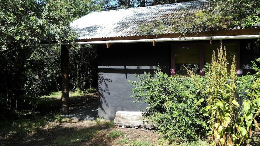 Monoambiente 35 mts². - Villa La Angostura - Loft