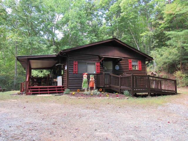 "Brasstown Bald Mountain Cabin - ""Bear Necessities"""