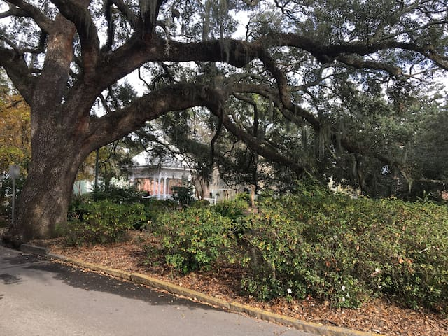 Private Crawford Square Beauty - Savannah - Wohnung