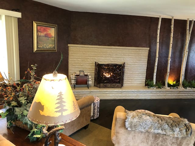 Beautiful family lodge with the comforts of home