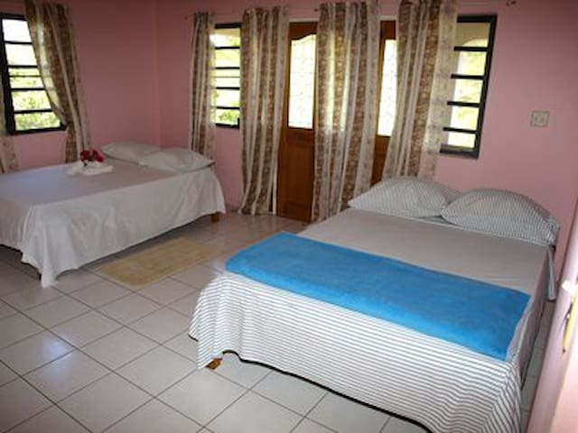 Empire State- Antigua Guesthouse - Falmouth - House