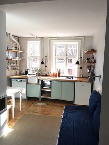 Sunny Studio in Frederiksberg C - Frederiksberg - Huoneisto