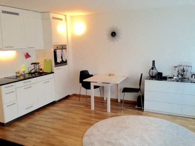 Lovely 1-Room Apartment in the Heart of Zurich - Zürich - Apartment