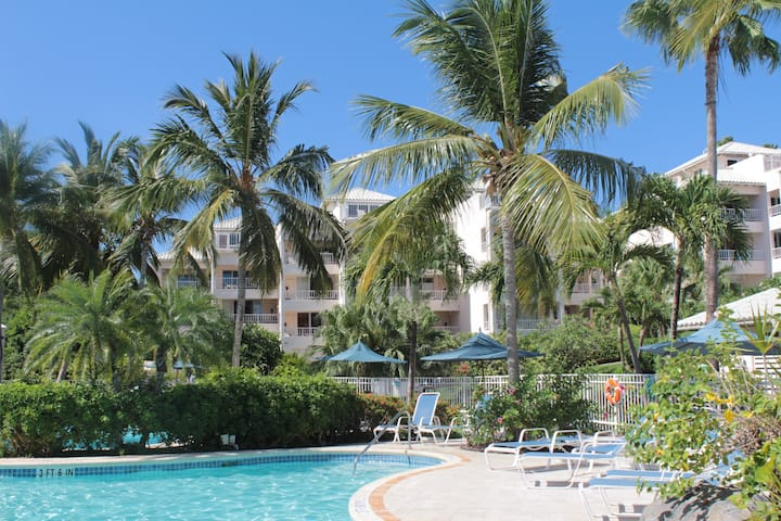 AMAZING  Beachfront Condo, Elysian Resort
