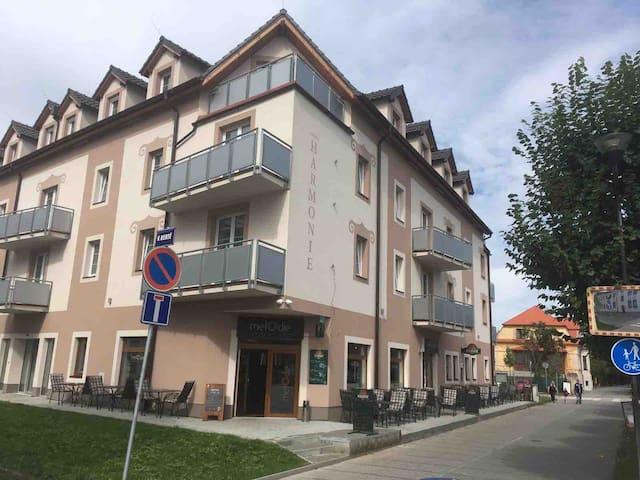 Cozy Apartment in heart of Třeboň 2kk