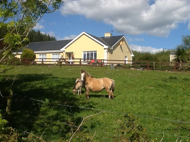 Farm House B& B,  East Clare between Tulla & Ennis - Tulla - Penzion (B&B)