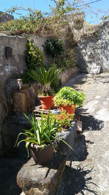 Patio de la Casita de Campo