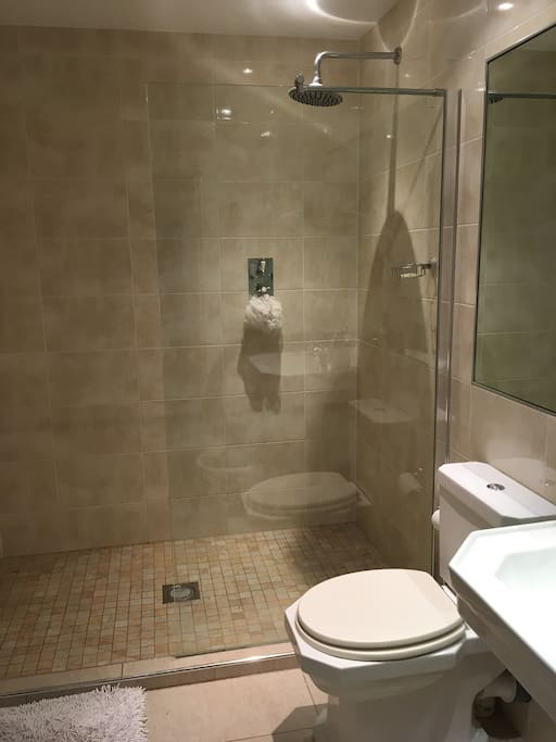 Wet room with rain shower.