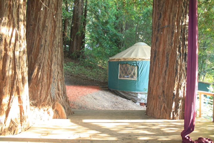 Redwood Yurt in Aptos Mountain Retreat Center