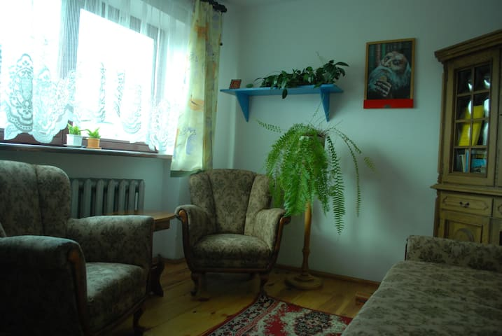 Cosy room in a house with garden - Warszawa - House