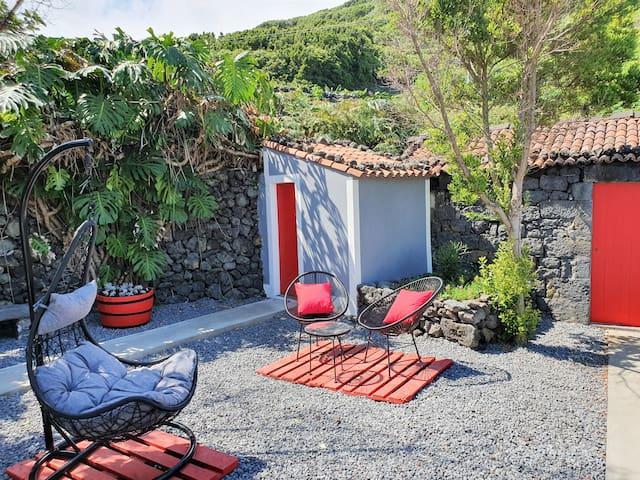 Quintal / Backyard