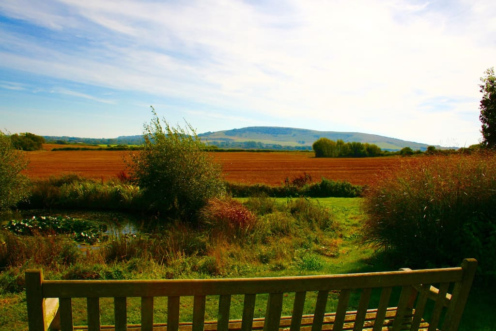 the view from the garden bench