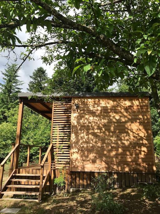 La cabane sous les châtaigniers