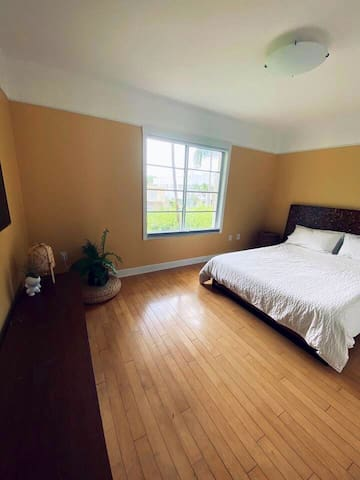 Master bedroom with walk-in closet and full bathroom