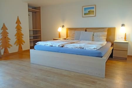 Spacious cozy double room with balcony in Radstadt