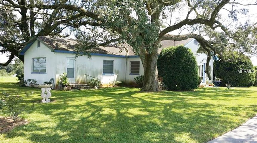 Farm House Tampa, Zephyrhills, Florida