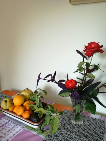 Casita terrera rodeada de flores - Puntagorda, Canarias, ES - Huis
