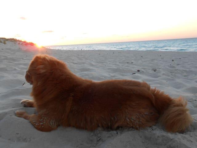 Varadero... la playa del eterno verano
