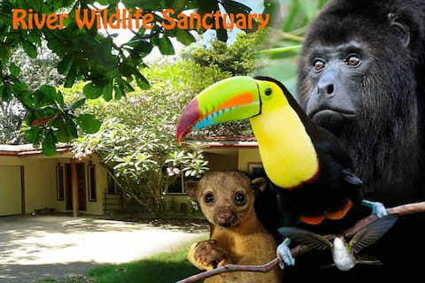 River Wildlife Sanctuary - Jungle At Your Doorstep