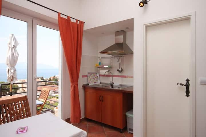 Studio flat with balcony and sea view Gradac, Makarska (AS-6661-b)