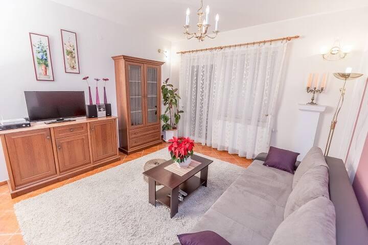 Apartment Košević 1 (apartment for 2+1 persons) - Osijek - Departamento