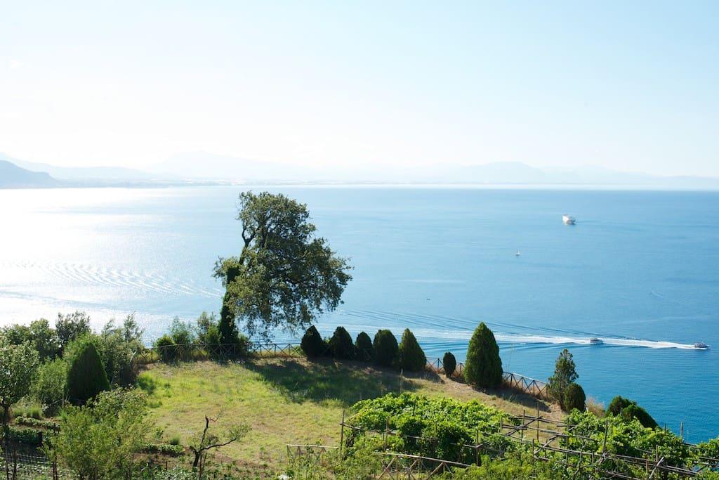 Golfo di Salerno: terrazzo panoramico
