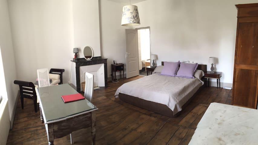 Grande chambre d'hôtes - Saint-Amans-Soult - Penzion (B&B)